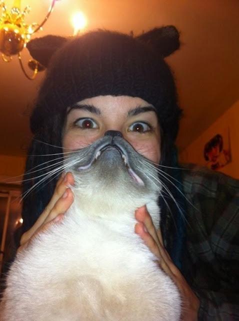 cat_beards_04