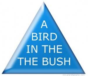 Besar kemungkinan anda katakan, 'A bird in the bush,'! dan Jika ini yang anda katakan, sebenarnya anda gagal melihat Perkataan THE diulang sebanyak dua kali. Maaf, teliti semula.