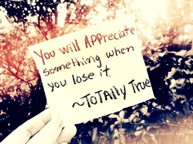 you_will_appreciate_something_when____by_sireysi-d4myf7f