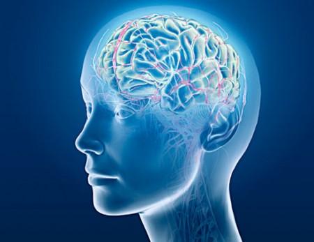 brainwave-brain