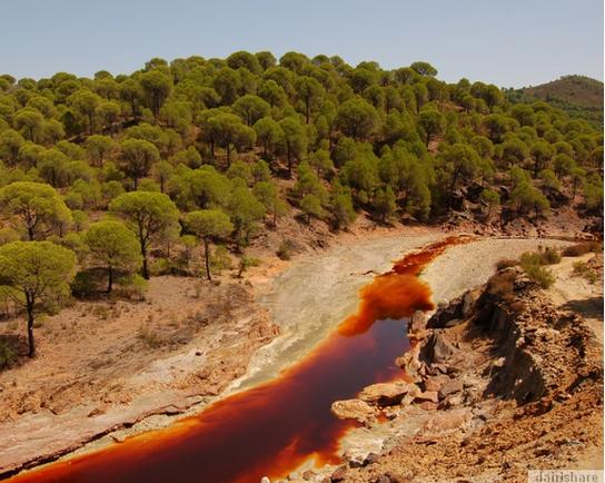 Sungai Paling Berasid Di Dunia Blog Roms